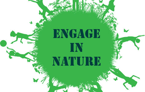 Engage in Nature with IFALL
